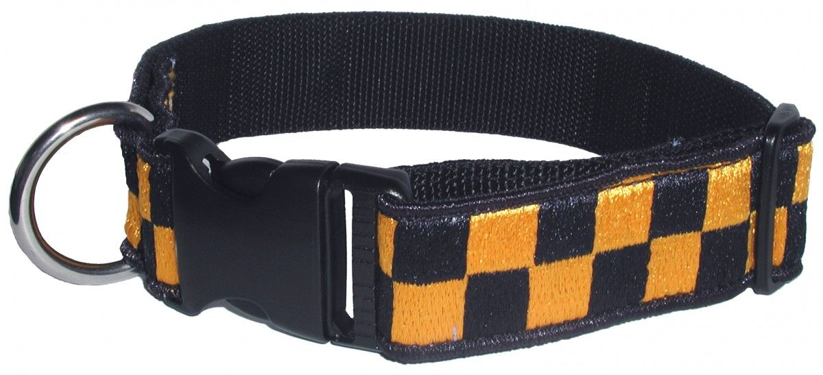 "1 1/2"" Decorative Embroidered Collar, Blue/Gold"