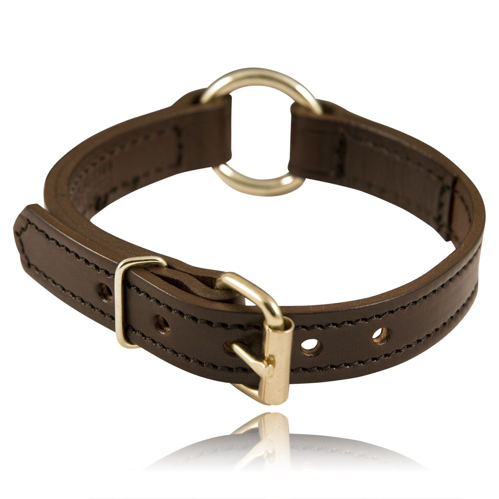 "1"" Split Ring K-9 Collar"